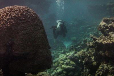 master-scuba-diver-training-dahab