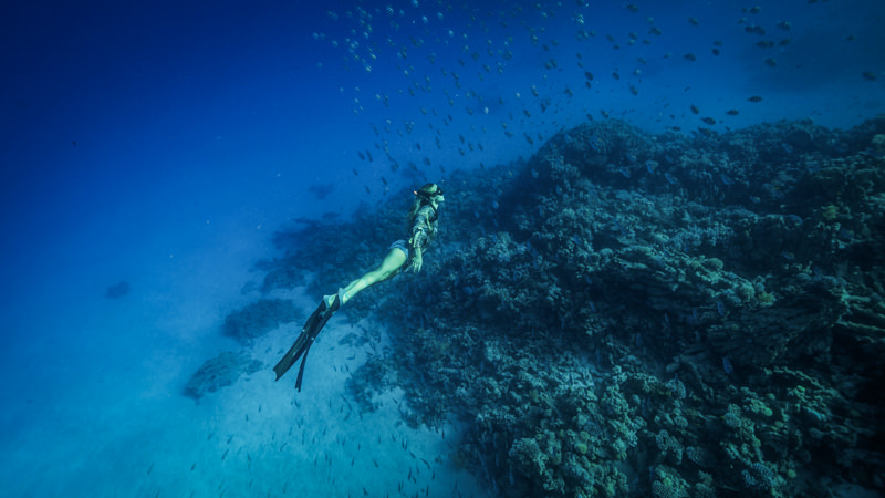 learn-freediving-IMG_7415