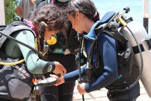 padi-junior-open-water-course-dahab