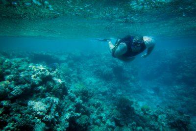 snorkeling in dahab egypt