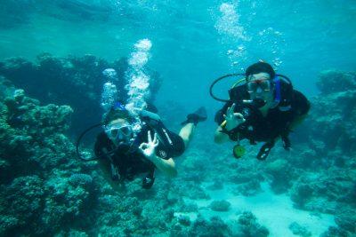 dahab diving
