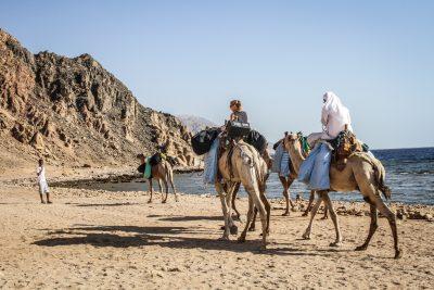 dahab-camel-diving-safari