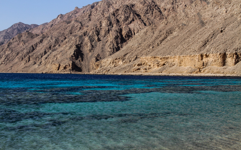 ras-abu-galum-best-diving-dahab