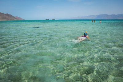 snorkeling-dahab-feat-DSCN1739