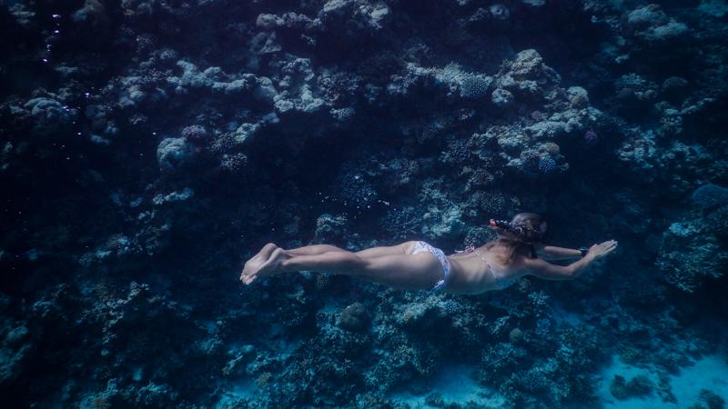 dahab-freediving-DSCN1884