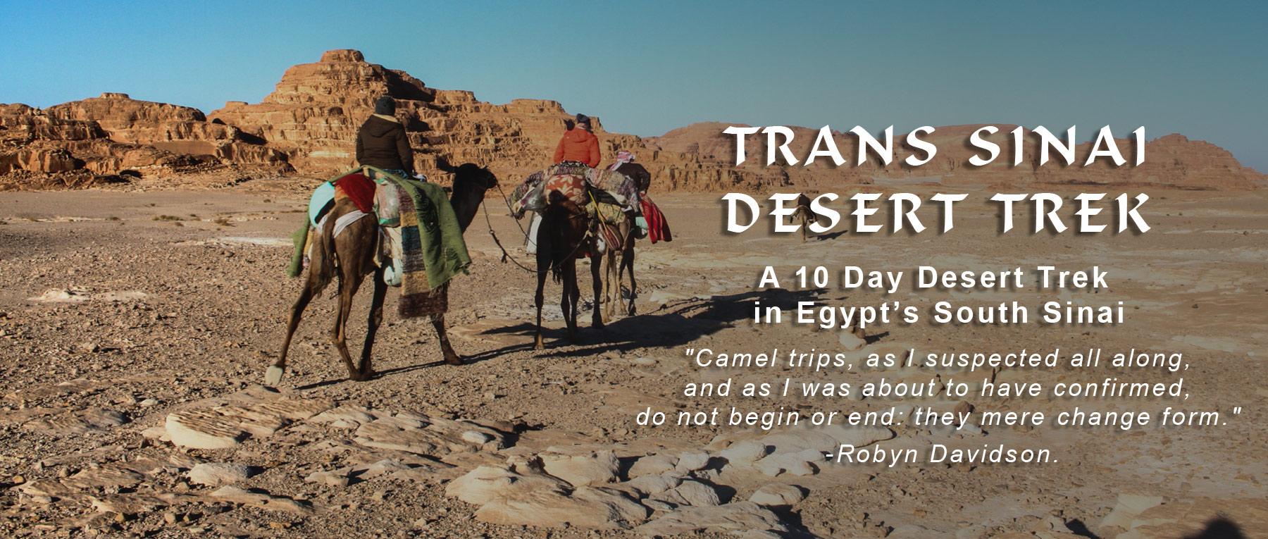 sinai-desert-trek
