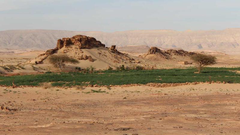 cairo-desert-trekking-Muzra