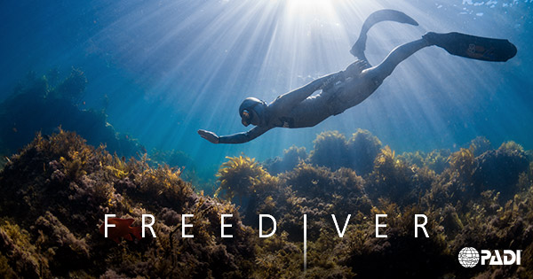 padi-freediver-banner