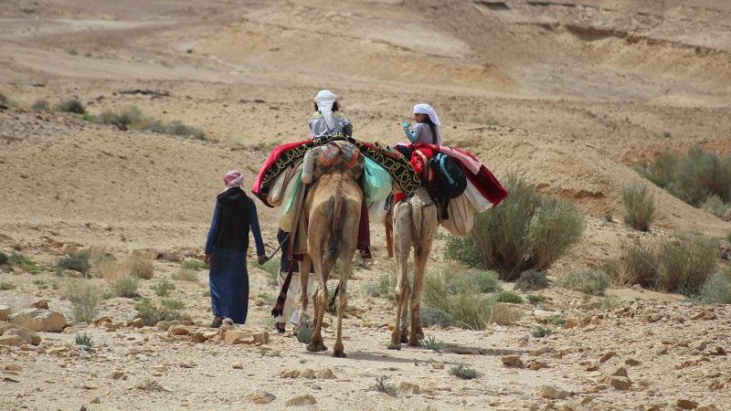 kids-trek-desert-el-guna-plateau