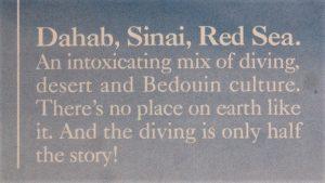 dahab-sinai-red-sea-quote