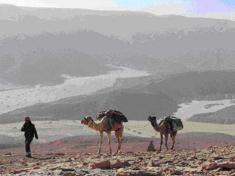 trekking-sinai-desert-jay-mackareth