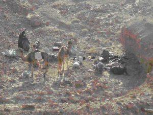 trekking-sinai-desert-camping-jay-mackareth